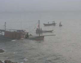 Tàu cá chìm trên biển, 7 ngư dân được cứu sống