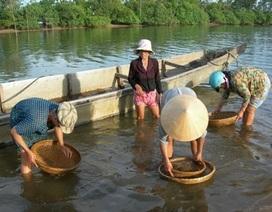 """Sông Lam """"khát"""" hến"""