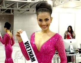 Trương Thị May và hành trình nỗ lực tại cuộc thi Hoa hậu Hoàn vũ 2013