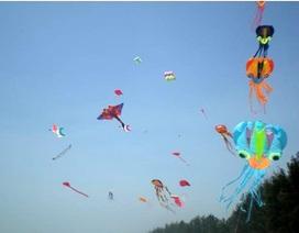 Lần đầu tiên TPHCM tổ chức hội thi diều nghệ thuật