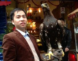 Ngắm đại bàng vàng Mông Cổ giá 10.000 USD
