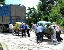 Ngăn chặn 333 người dân sang Trung Quốc làm thuê trái phép