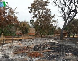 Cháy làng Kon Sơ Lăl cũ, Tây Nguyên mất đi một báu vật