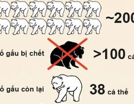 Infographic: Giải cứu đàn gấu nuôi ở Quảng Ninh