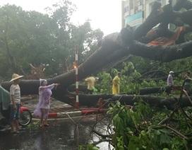 Giông lốc gây chết người ở Hà Nội: Chỉ cảnh báo được trước 1-3 giờ