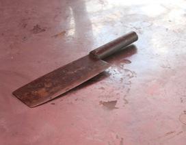 Nóng giận, vợ xách dao chém chồng rồi uống thuốc sâu tự tử