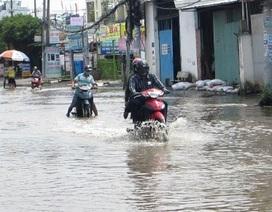 TPHCM: Con đường không mưa cũng ngập