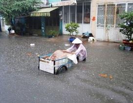 TPHCM: Ngập nặng 15 điểm sau một cơn mưa