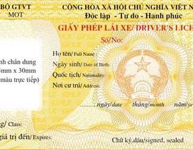 Kiến nghị không gộp chung giấy phép lái xe