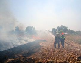 Ngăn chặn nguy cơ gây cháy rừng từ phía Campuchia