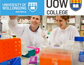 Lộ trình tốt nhất để nhập học Đại học Wollongong danh tiếng