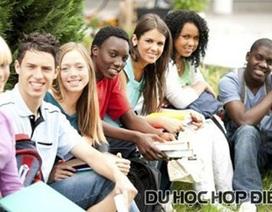 22/03: Hợp Điểm báo cáo du học Mỹ với học phí tiết kiệm dưới 10.000 đô Mỹ