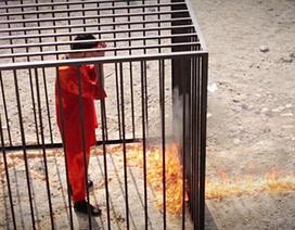 """IS tung video """"thiêu sống"""" phi công người Jordan"""