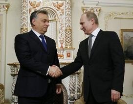 Nga đang tăng cường quan hệ với những đồng minh nào?