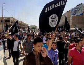 3 thanh niên Anh bị bắt trên đường tới đầu quân cho IS