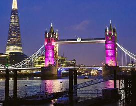 London rực sắc hồng chào mừng tiểu công chúa