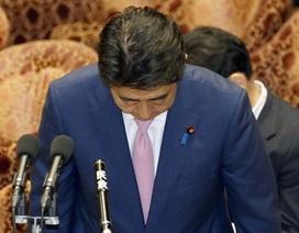 Thủ tướng Nhật Bản cúi đầu xin lỗi nghị sĩ đảng đối lập