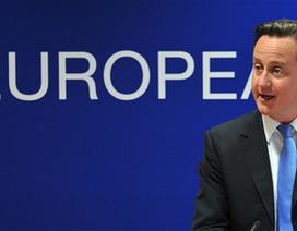 """Các triệu phú """"tài trợ"""" chiến dịch kêu gọi Anh rời khỏi EU"""