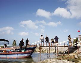 """Bắc Kinh lại thách thức dư luận bằng tuyên bố về """"khu định cư ở đảo Cây"""""""