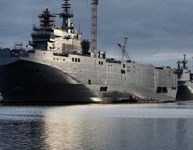 Công ty Pháp sẵn sàng cung cấp công nghệ giúp Nga tự đóng Mistral