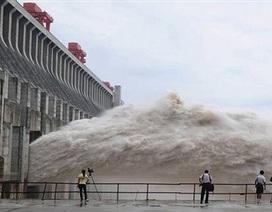 Trung Quốc khởi công xây đập cao nhất thế giới