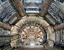 Tại sao hạt Higgs không được giải Nobel năm nay?