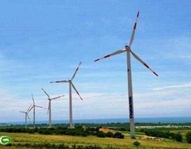 Việt Nam bước đầu phát triển điện gió