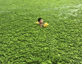 """Hình ảnh chấn động về những dòng sông """"chết"""" ở Trung Quốc"""