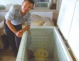 Sự thật về xác người ngoài hành tinh ở Trung Quốc