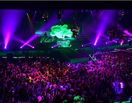 Hàng ngàn khán giả cuồng nhiệt trong đêm nhạc Heineken Live Access