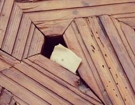 Bức thư tình trăm tuổi cài trong khe cửa cung điện hoàng gia Tây Ban Nha