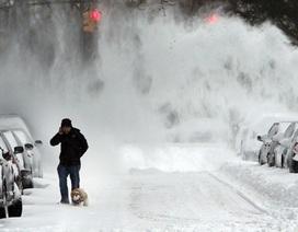 """Thủ phạm """"mùa đông thảm họa"""" ở Mỹ"""