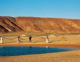 Giải mã dấu hiệu bí ẩn trên sa mạc Ai Cập