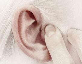 Ráy tai có thể tiết lộ thiên hướng tình dục