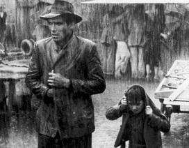 Cuộc sống khốn khổ của những diễn viên từng tỏa sáng tại Oscar