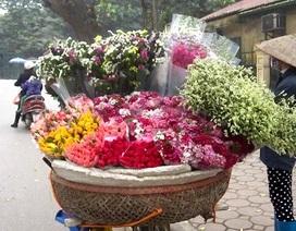 Xe hoa nhọc nhằn- một nét văn hóa phố của Hà Nội
