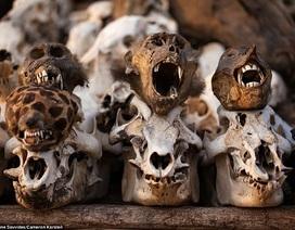 """Chợ """"rùng rợn"""" nhất Châu Phi"""