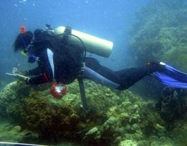Phó Thủ tướng đặt câu hỏi: Nhà khoa học có bám biển?