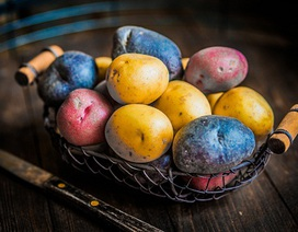 Lợi ích và tác hại của khoai tây