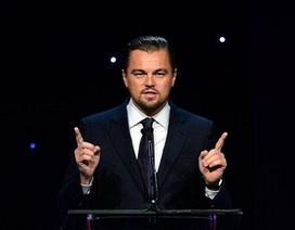 Tài tử Titanic chi triệu đô để cứu loài voi