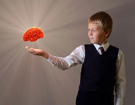Học càng sớm càng tốt cho não bộ