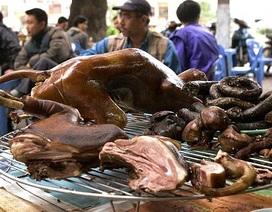 """Báo Anh """"sửng sốt"""" trước nghề kinh doanh thịt chó ở Việt Nam"""