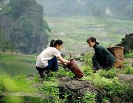 Việt Nam ấn tượng trên những thước phim thế giới