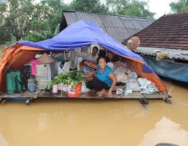 """Một tuần nước mới rút hết, bà con vùng lũ """"khát"""" nước sạch, lương thực"""
