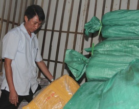 Hà Tĩnh: Hàng trăm tấn cá nhiễm độc vẫn chưa được tiêu hủy