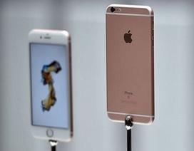 Fan cuồng rao bán thận để kiếm tiền mua iPhone 6S