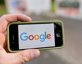 Tên miền Google.com bị mua lại với giá... 12USD