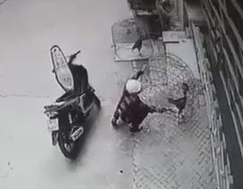 """Clip """"trộm gà cho vào cốp xe máy"""" gây xôn xao Internet tuần qua"""