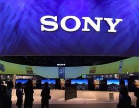 """Đến lượt Sony """"khoe hàng"""" tại CES 2016"""