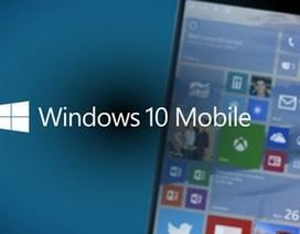 Nền tảng di động Windows 10 Mobile tiếp tục trễ hẹn